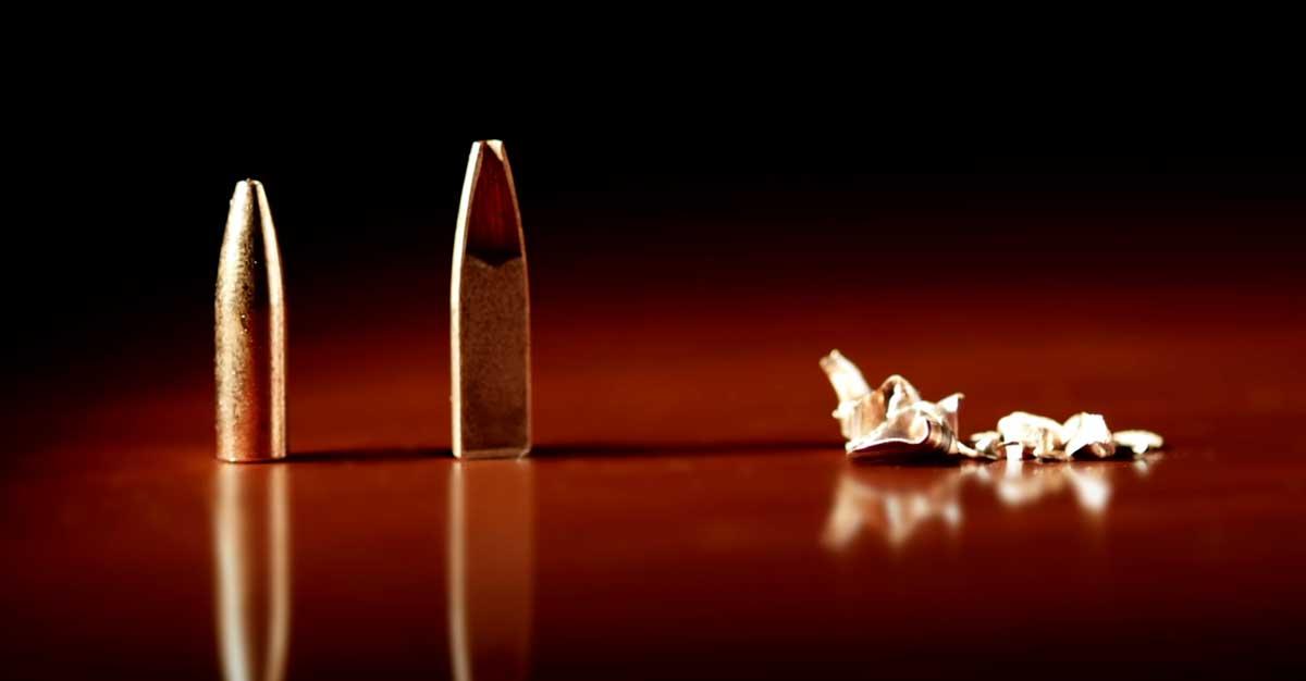 Varmint Grenade Bullet Close Up
