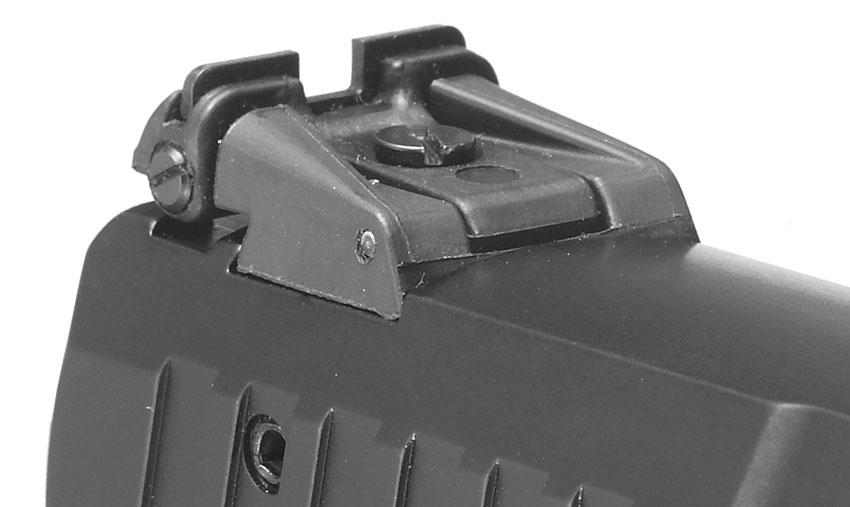Ruger SR 22 sights