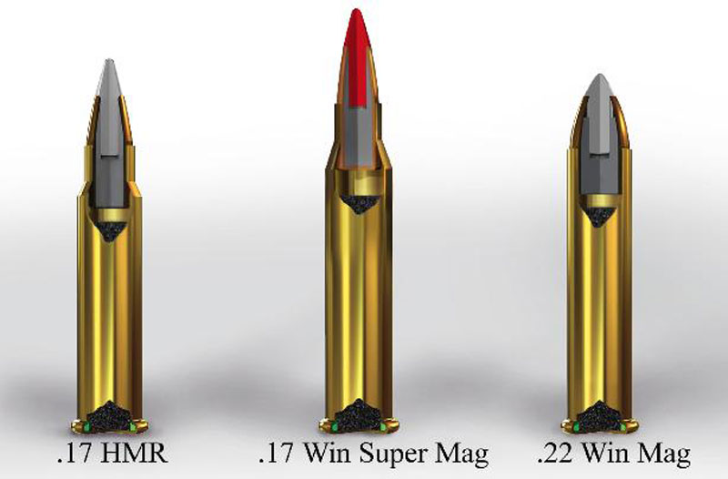 .17 Winchester Super Magnum
