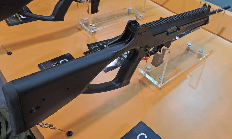Caracal CC10 picture