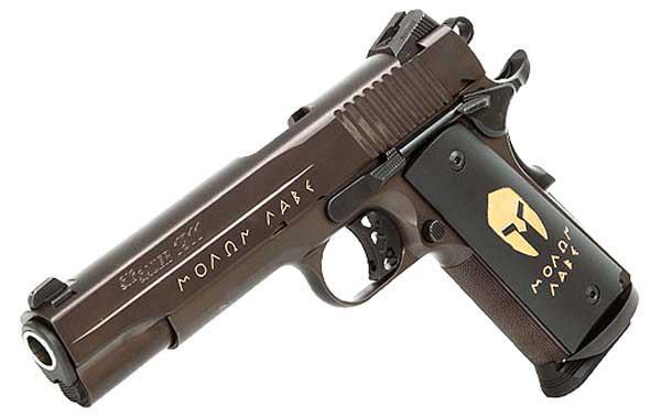 SIG 1911 Spartan picture
