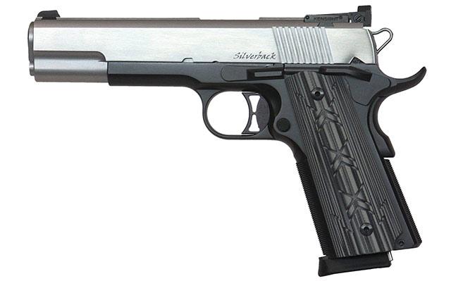 Dan Wesson Silverback 10mm