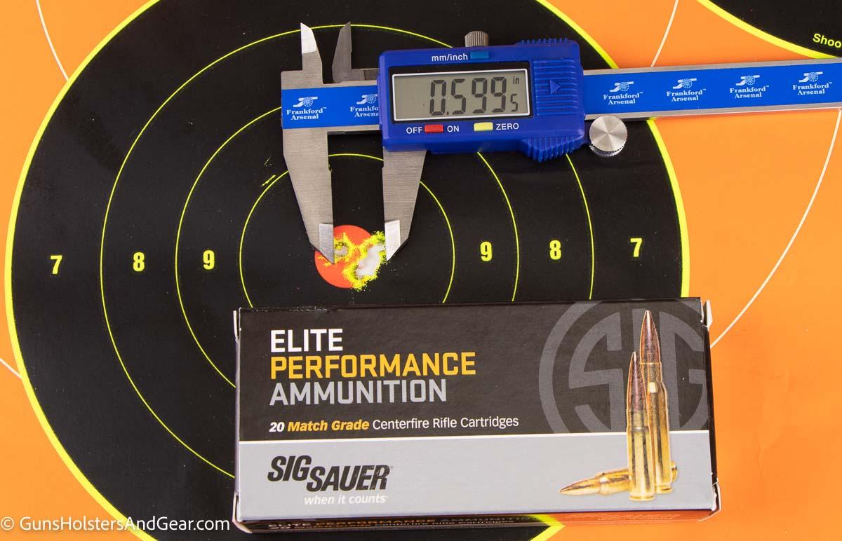 SIG Ammunition Performance Target Photo